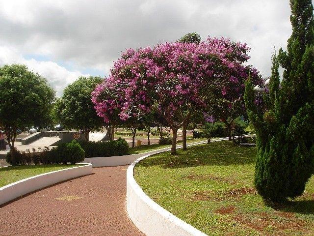 Praça Ângelo Darolt. 20040.jpg (640×480)