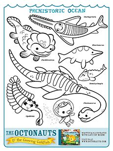 70 best Coloring for Preschoolers images on Pinterest Coloring