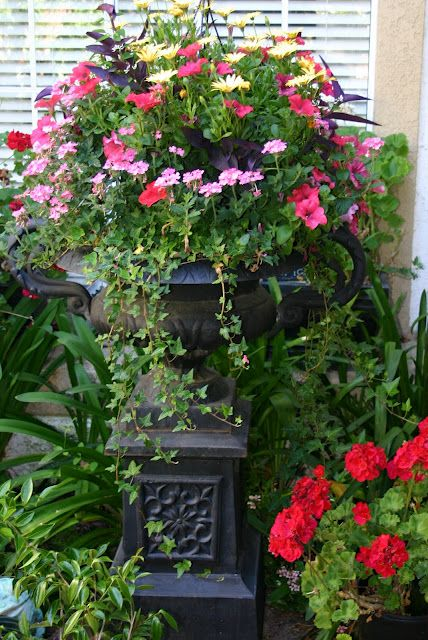 Urn filled with beautiful and bright flowers scroll through my garden pinterest gardens - Potted gardentricks beautiful flowers ...