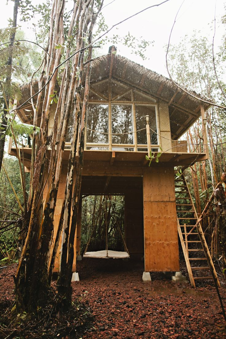 101 best dwelling in the trees images on pinterest the tree