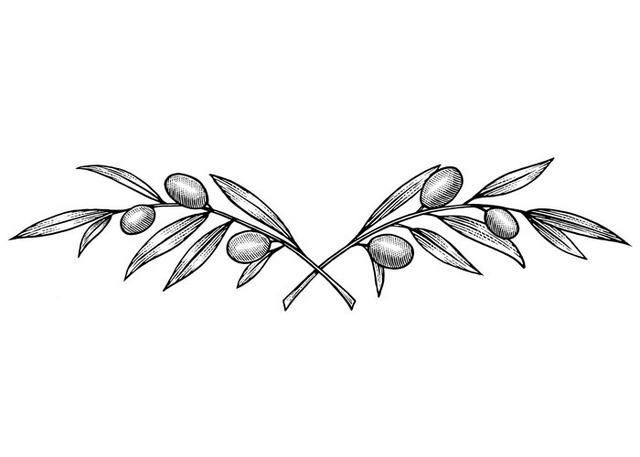 Infinity Olive Branch Tattoo - Yahoo Search Results Yahoo Image Search Results