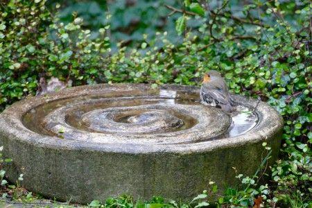Betonspirale als Vogeltränke und Vogelbad http://doyowesi.de/artikel/betonrelief/