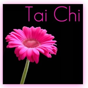 The Newton Parks & Recreation Department and the Catawba County Council on Aging will offer Tai Chi for Seniors every Friday afternoon in March 2012