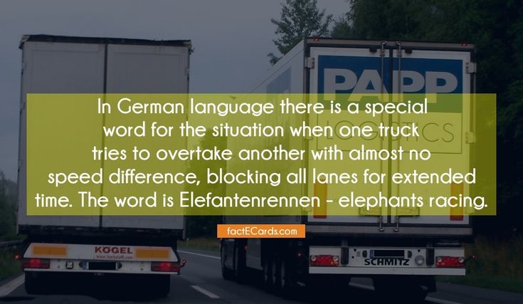 In German language there is a special word for the situation when one truck tries to overtake another with almost no speed difference, blocking all lanes for extended time. The word is Elefantenrennen – elephants racing. - http://factecards.com/german-language-there-special-word/