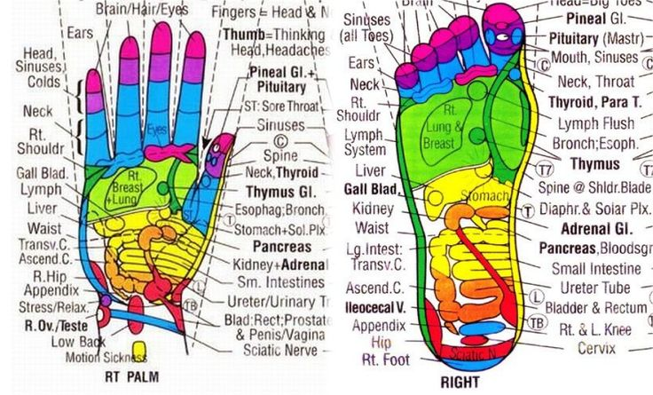 by Organic Health Reflexology is the application of appropriate pressure to specific points and areas on the feet, hands or ears. Reflexologists do believe that these areas and reflex points corres…