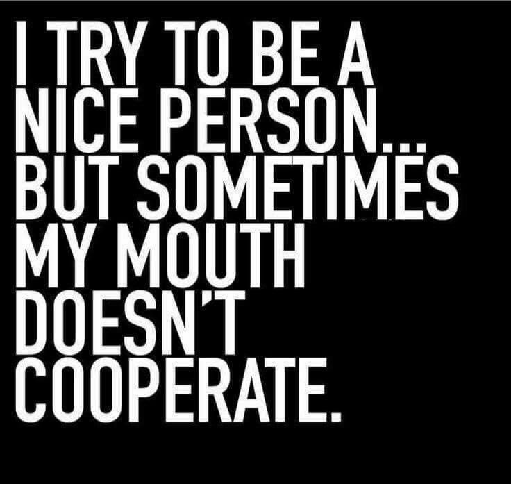 I try to be a nice person, but sometimes my mouth doesn't cooperate.