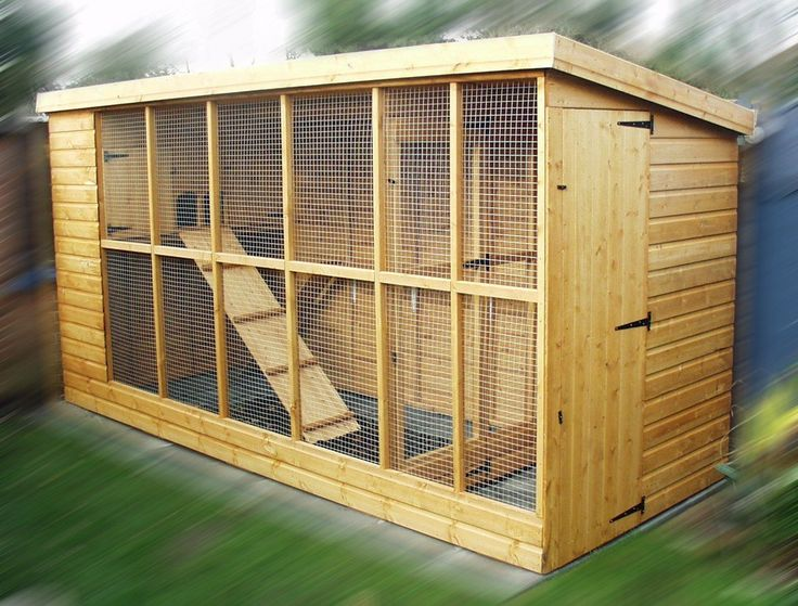 enclosed cat pen for outside | Wedge 2 Cattery | Super Pet Shack