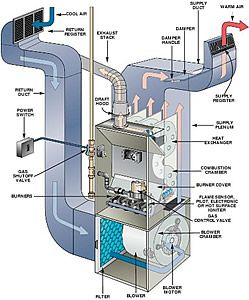 Your furnace is a hotbed for bacteria, mold and fungus. Learn more about furnace and duct cleaning.