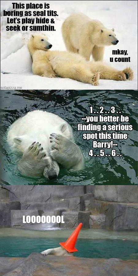 dbeea68d2d193ed2193e891b7ca05053 42 best polar bear images on pinterest wild animals, polar bears