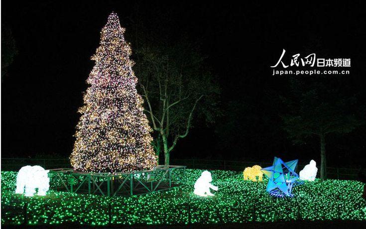 400万球の光の祭典「さがみ湖イルミリオン」がスタート (4)--人民網日本語版--人民日報