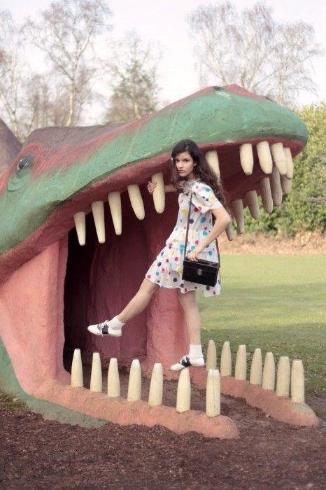 "Evangeline Ling for Rookie Magazine ""Dinosaur Jr."""