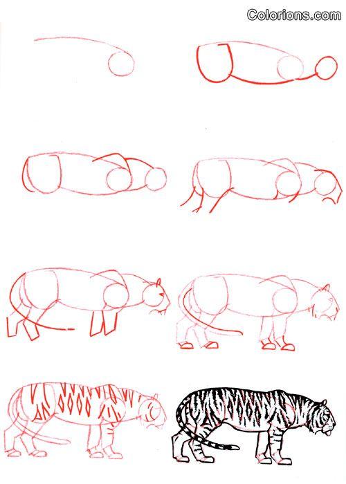 Les 25 meilleures id es de la cat gorie dessin tigre sur pinterest - Idees dessin simples ...
