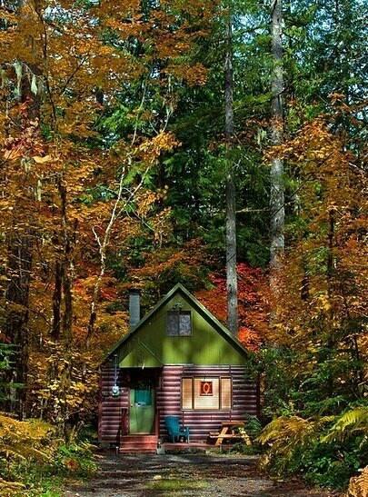 Oregon travel pinterest for Cabin in the woods oregon