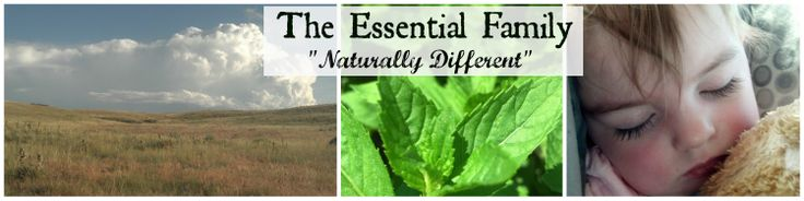 Spotlight on Thieves Essential Oil and a Giveaway!The Essential Family   The Essential Family