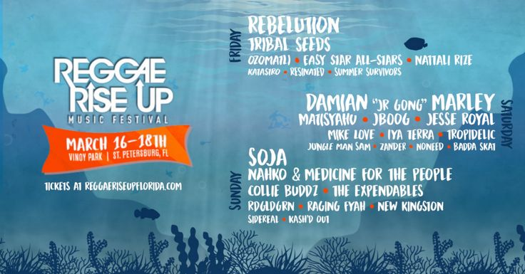 Enter to win VIP tickets to see Rebelution, Damian Marley, SOJA, Nahko & Medicine for the People, Tribal Seeds, Matisyahu, J Boog & many more at Reggae Rise Up Florida Festival 2018!