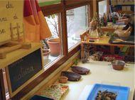 Il tavolo della natura nella Casa dei bambini | Esploriamo la botanica