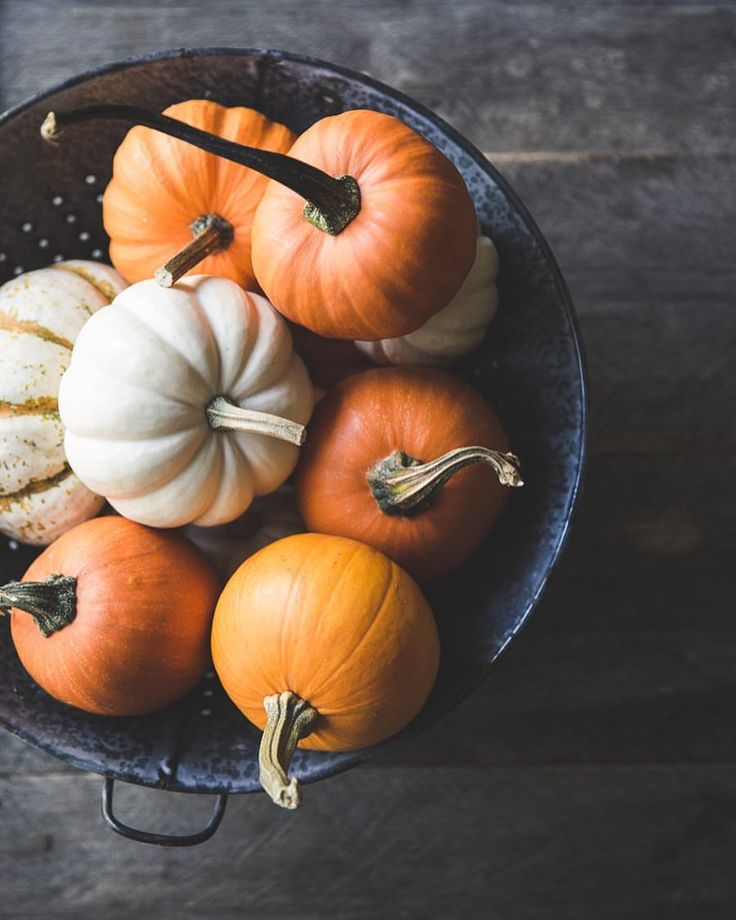 A Bowl of Pumpkins