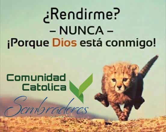 Rendirme? .Nunca- porque Dios esta conmigo!  #sembradoresdelapalabra #comunidadcatolica #comunidadsempal #rccdecolombia #rccbogota www.sembradoresdelapalabra.com