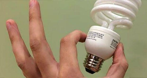 voici-pourquoi-vous-devriez-vous-debarrasser-des-ampoules-ecoenergetiques