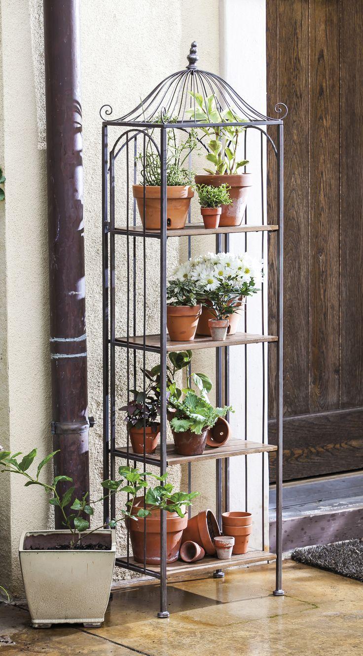Black metal shelves modelled on antique bird cage