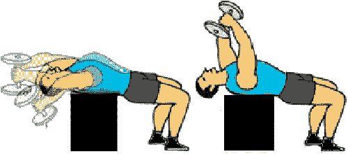 le pull-over pour renforcer le rhomboide