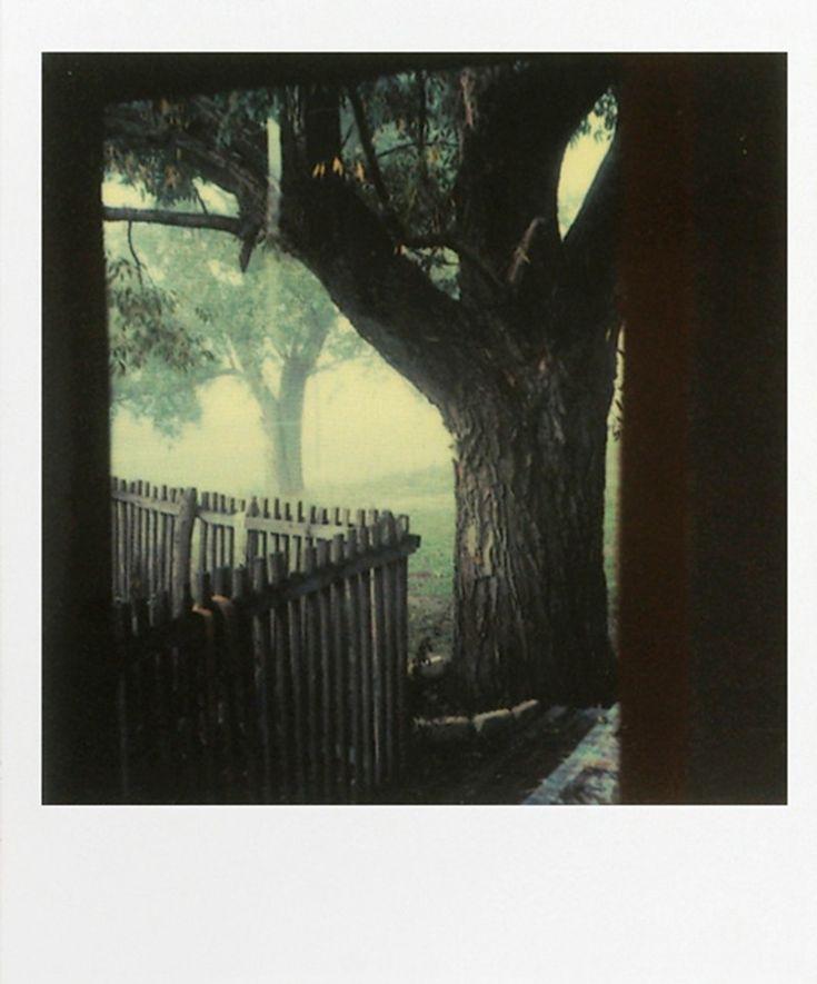 Polaroid by Andrei Tarkovsky, 1979-84.