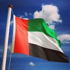 flag day uae 2013
