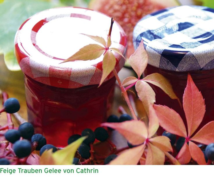 Feige Trauben Gelee by Holyfee on www.rezeptwelt.de