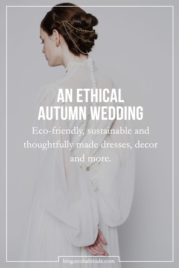 Planning an eco-friendly Autumn wedding? Follow the link for tips and inspiration from the EcoHabitude Blog.