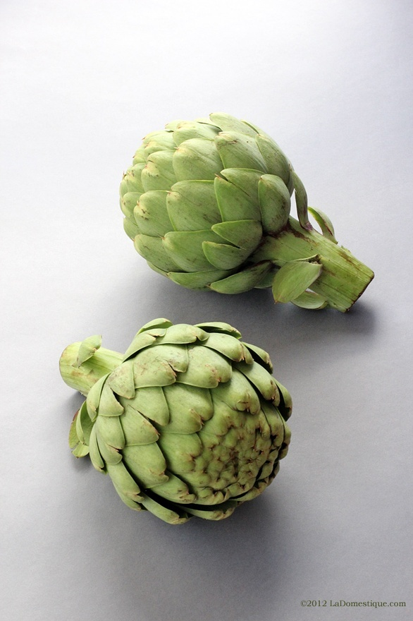 Artichokes the-beauty-of-an-ingredient