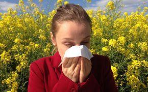 Heuschnupfen ist wohl eine der lästigsten Allergien überhaupt: Die Nase läuft, die Augen jucken und ein Niesanfall folgt auf den nächsten – und das wochenlang. Mit den richtigen Hausmitteln wird Heuschnupfen erträglicher – und das ganz ohne Medikamente.