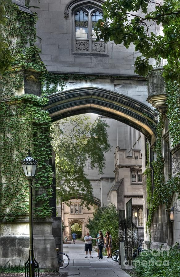university of chicago quadrangle