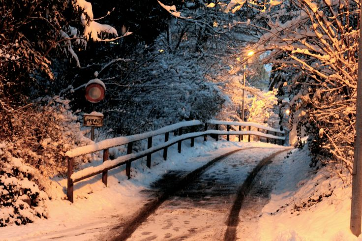 winter walks, zug