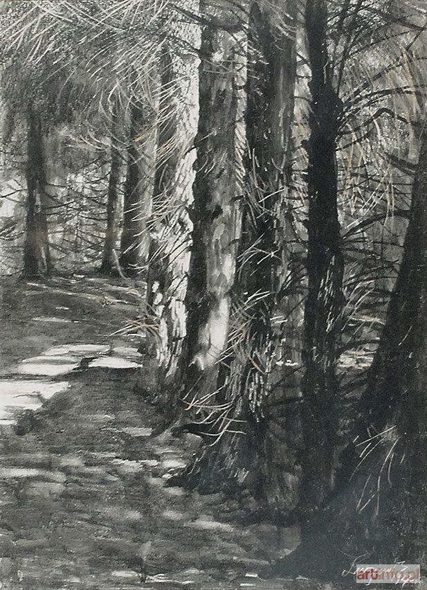 Leon WYCZÓŁKOWSKI ● Wnętrze lasu, 1927 ●