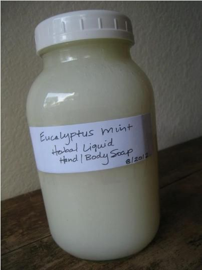 Homemade Eucalyptus And Mint Liquid Herbal Hand Soap And Body Wash