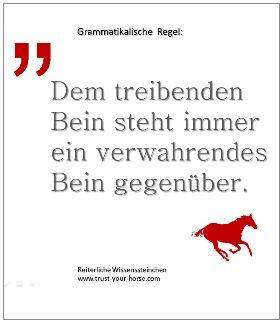 Trust-your-Horse WISSENSSTEINCHEN: Dem treibenden Bein ist stehts ein verwahrendes Bein gegenüberzustellen. Dies hat zum einen die Aufgabe, die durch das Bein ausgelöste Energie 'unter' das Pferd zu bringen und zum anderen die Linie zu halten. (R.Vizethum)
