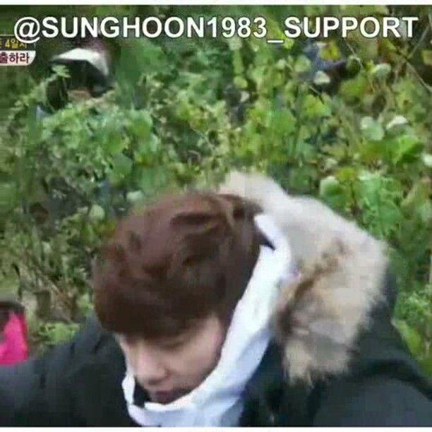 7 個讚,1 則留言 - Instagram 上的 Debbie Moh(@debbie_moh):「 #Repost @sunghoon1983_support ・・・ 😱😱wake up! wake up!😱😱🐷 #SUNGHOON 🐷 @sunghoon1983 🐷 🏃🏃GO!… 」