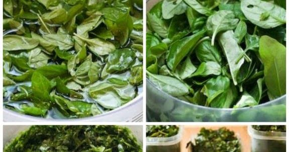 How to Freeze Fresh Basil and Ideas for Using Frozen Basil