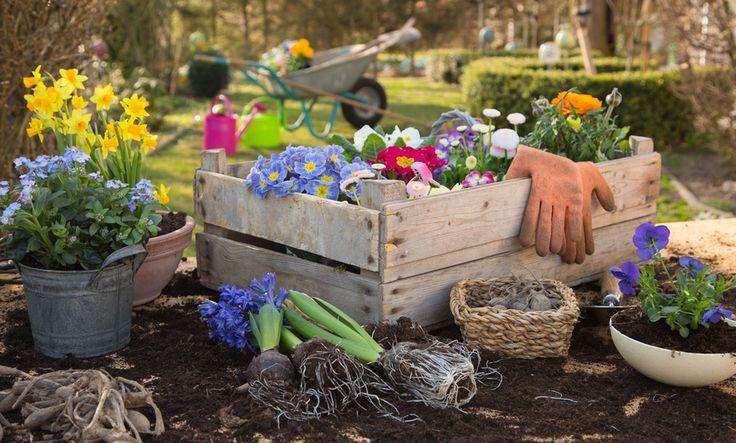 Kezdjük el együtt a kertimunkát! Kertészkesztyűink széles választékához, kattintson a képre!