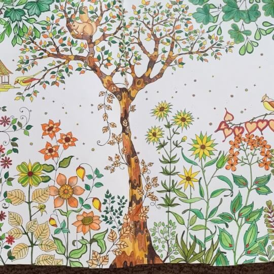 Take A Peek At This Great Artwork On Johanna Basfords Colouring Gallery Basford Secret GardenPostcard DesignColoring BooksColouringSecret