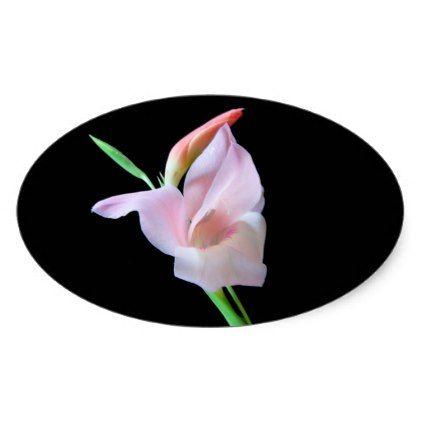 #flower - #Nature/n Oval Sticker