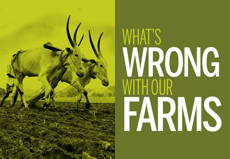 What's wrong with #India's farms? Everything, including the #farmers. Read the story at