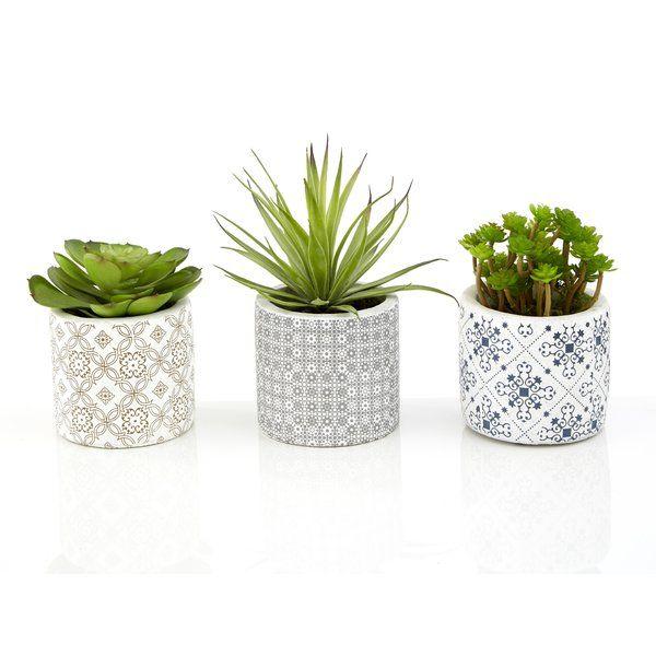 Sprague 3 Piece Succulent Desktop Plant In Pot Set Artificial Succulent Plants Plant In Glass Hanging Flowering Plants