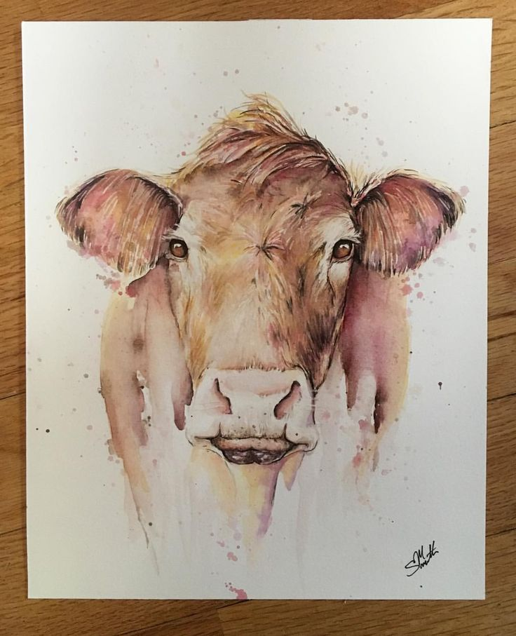 Moo cow! Abstract watercolor brown cow painting. Love those cow noses!