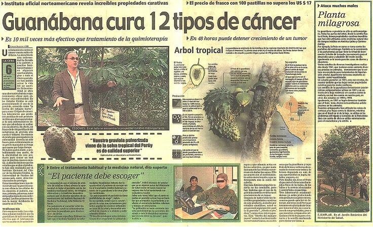 O chá que, para muitos, é milagroso e pode curar até câncer - Em vários países, a graviola é reconhecida como um poderoso tratamento natural contra o câncer. Nos Estados Unidos, por exemplo, a fruta é bem valorizada e muitos suplementos contendo seu extrato são comercializados. Os americanos, a propósito, devem ser os que mais…