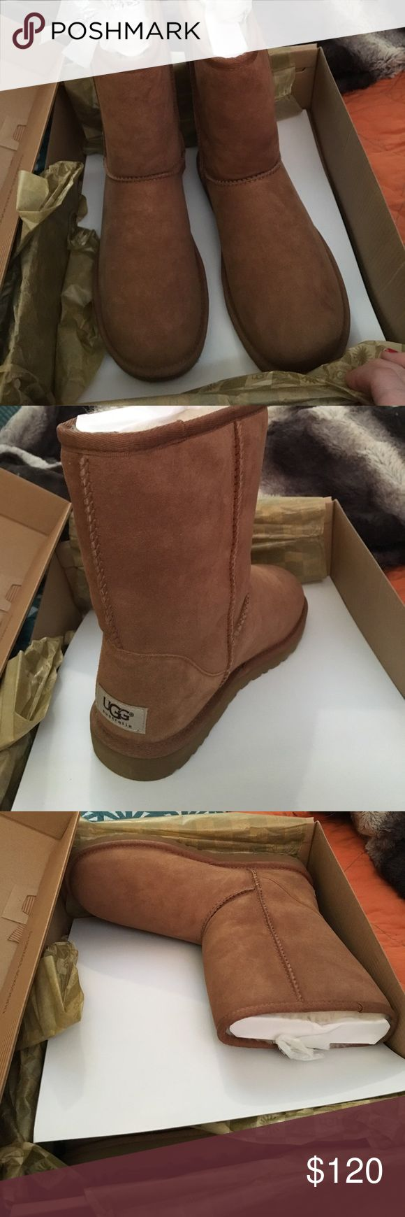 Classic short Ugg's. Hits above ankle. OBO Brand new classic tan short Uggs' never worn, still in box and stickers on bottom of boot. Offers welcome! However don't want to stray way below what I'm asking. UGG Shoes Ankle Boots & Booties
