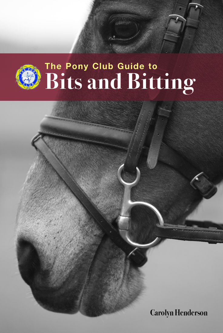 Pony Club Guide to Bits and Bitting by Carolyn Henderson | Quiller Publishing. When you look at how many types of bit are available, it can seem a complicated subject - but although there are lots of factors to consider, it doesn't have to be confusing. Bitting is a skill, but it's one that anyone can learn. This book will help slice through the jargon and explain the subject in the clearest way. #horse #riding #bits #bitting #guide