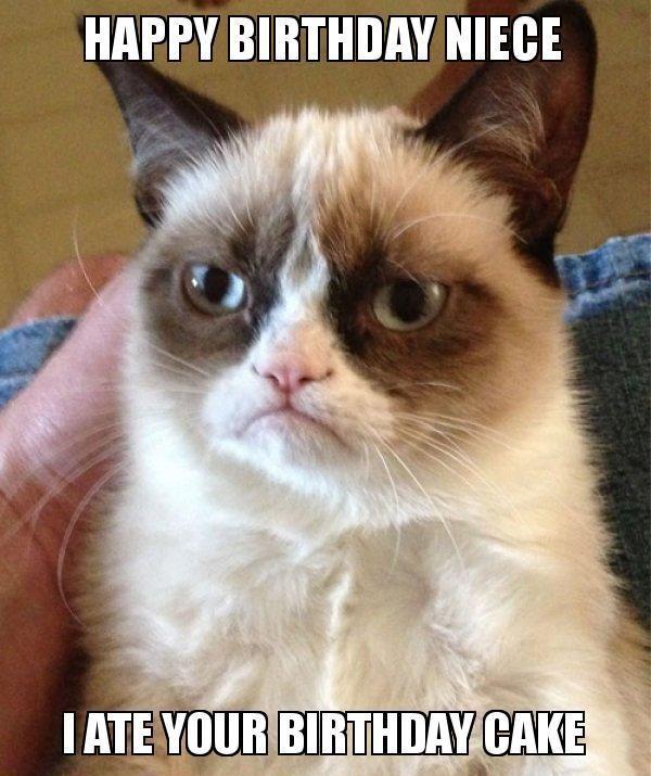 22 Hilarious Happy Birthday Niece Meme Pictures Grumpy Cat Humor Funny Grumpy Cat Memes Grumpy Cat Meme