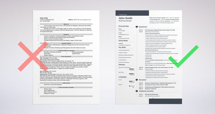 professional resume template with a resume summary example