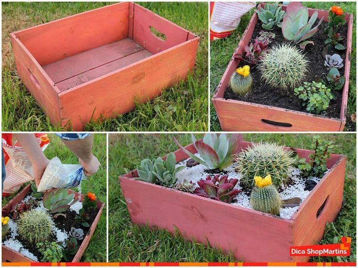 mini jardim de cactus: de #decoração? Sabem aqueles #caixotes de madeira, são perfeitos